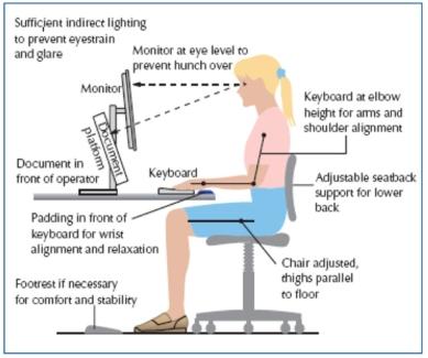 Optimum sitting position