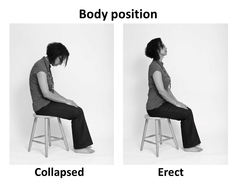 Figure 1 body position