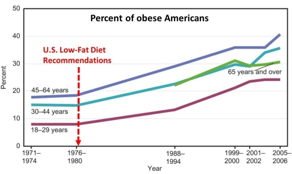 obesity in USA and low fat dieta